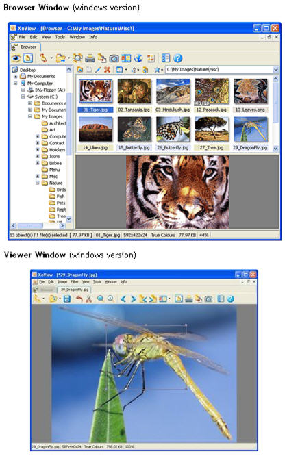 Free Photo Editing Software Xnview Download