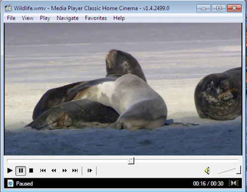 Download Media Player Classic Free For Windows 32 Bit And