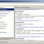 Dictionary and Language Translator For Desktops