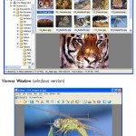 Free photo editing software - XnView [Download]