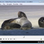 Download Media Player Classic Free