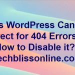 WordPress Canonical Redirect for 404 Errors
